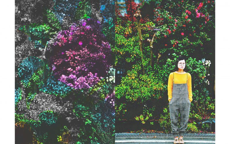 鳥取でプロフィールの写真撮影や、今の自分を残すポートレート撮影を広告する画像-3
