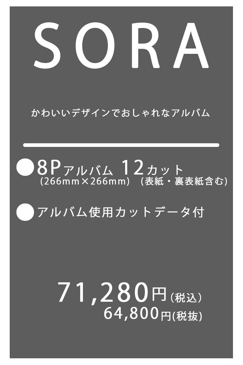 七五三は大切な記念日だからこそ七五三の写真を残すには鳥取のロケ撮影も出来るマジカルフォトワークへ